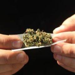 Emite SCJN jurisprudencia para permitir el uso de la marihuana con fines recreativos