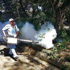 Pide SSJ recurso extraordinario para contingencia del Dengue