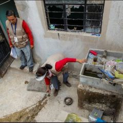 Aumentan brotes de dengue en Jalisco