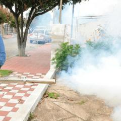 Con cinco meses de retraso llegan brigadas para combatir el Dengue