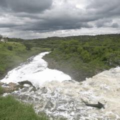 ¿Cuáles son las empresas en Jalisco que arrojan sus desechos al Río Santiago?