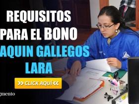 Requisitos para el Bono Joaquin Gallegos Lara