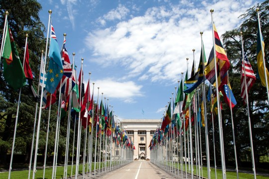 United_Nations_Flags_-_cropped