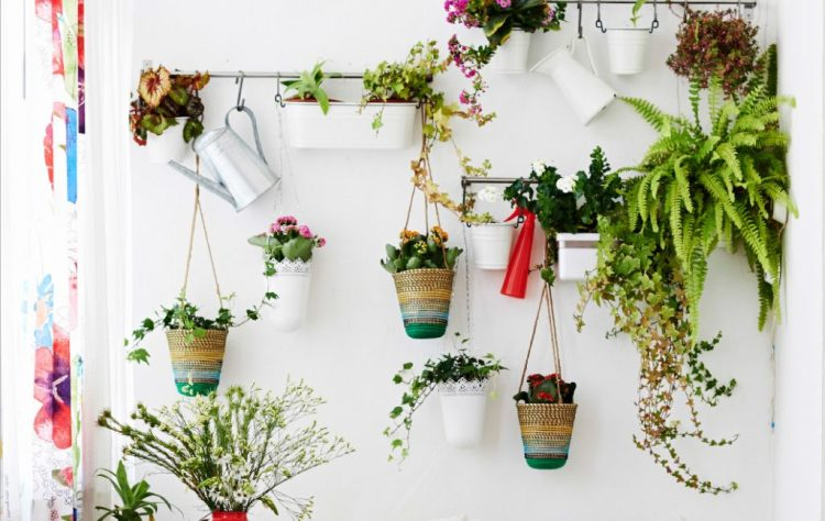mantener fresca tu casa, jardines verticales, ikea