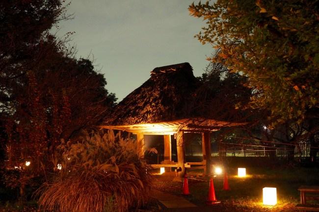 江戸東京たてもの園20151122-5