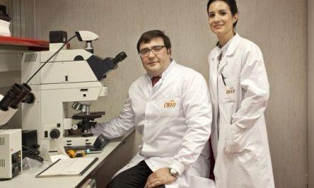 Confirman el nexo entre el cáncer de próstata y el cáncer de mama hereditario