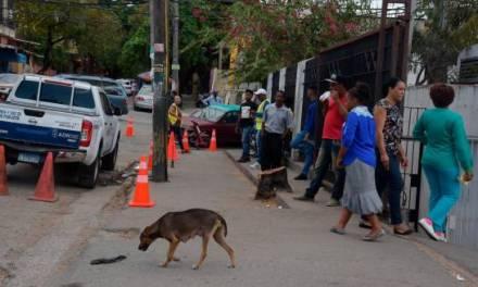 Alcaldía desaloja a varios vendedores del entorno de la Ciudad Sanitaria