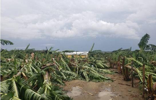 Tornado derriba plantaciones y casas en comunidades Hato Mayor y Montecristi