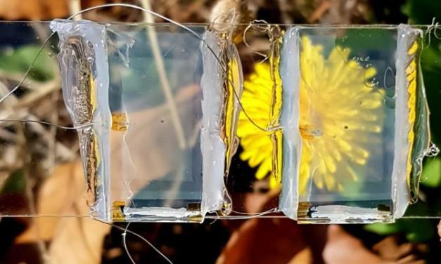 Hacia los paneles solares invisibles