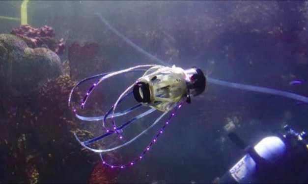 Sorprendente robot calamar