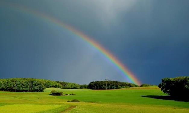 Sí, el arcoíris también tiene su día