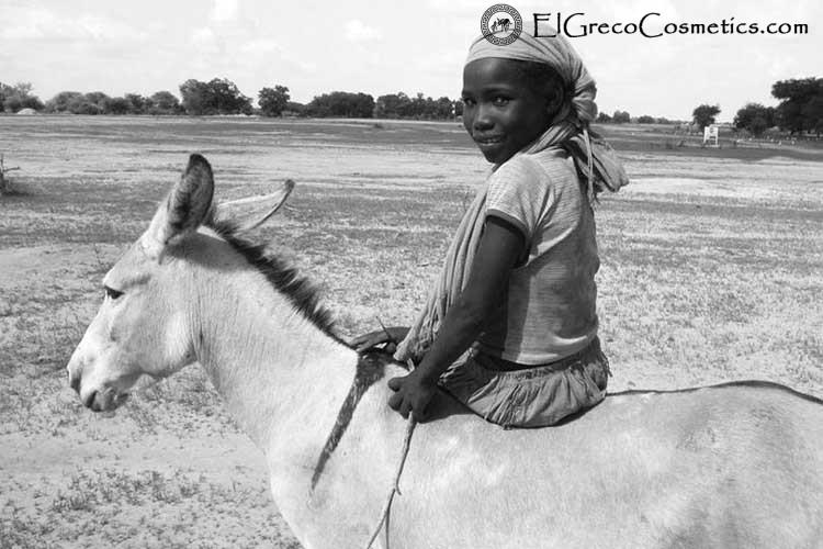 donkeys milk
