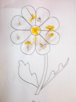 A Daisy made with Daisies!!!