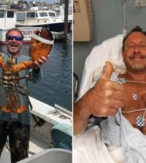 Buzo sobrevive tras ser engullido y escupido por una ballena