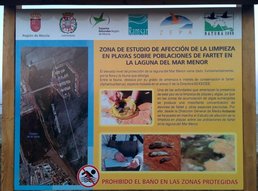 Cartel explicativo de la presencia del fartet y prohibición del baño.