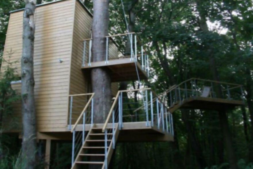 11. Apartamentos que rodean a un árbol