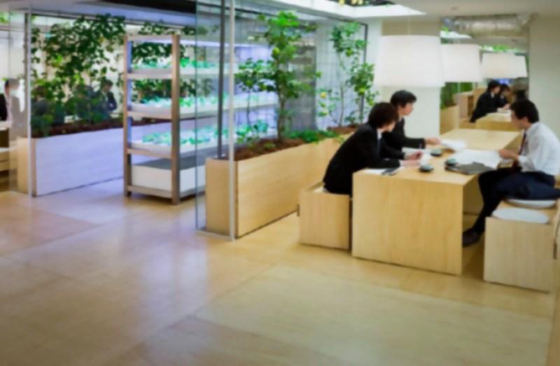 2_urban farm offices