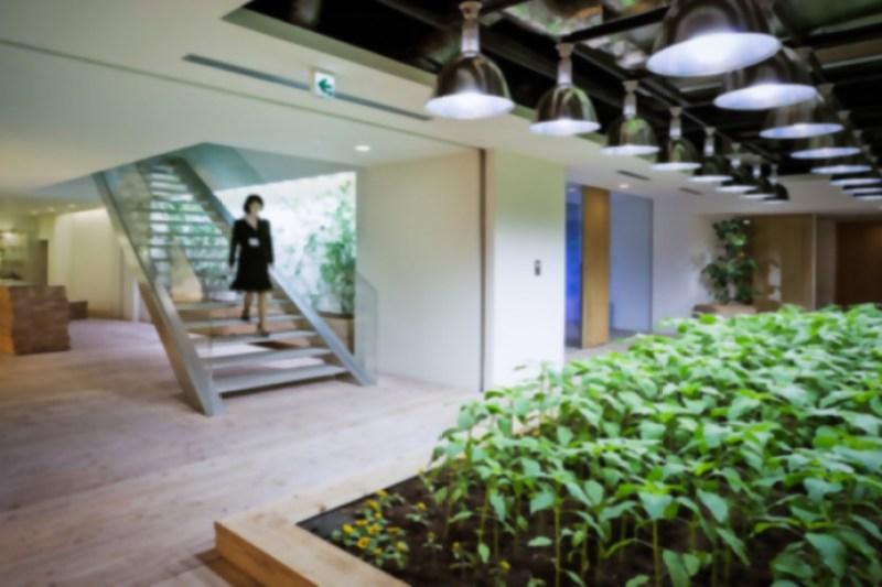 8_urban farm offices