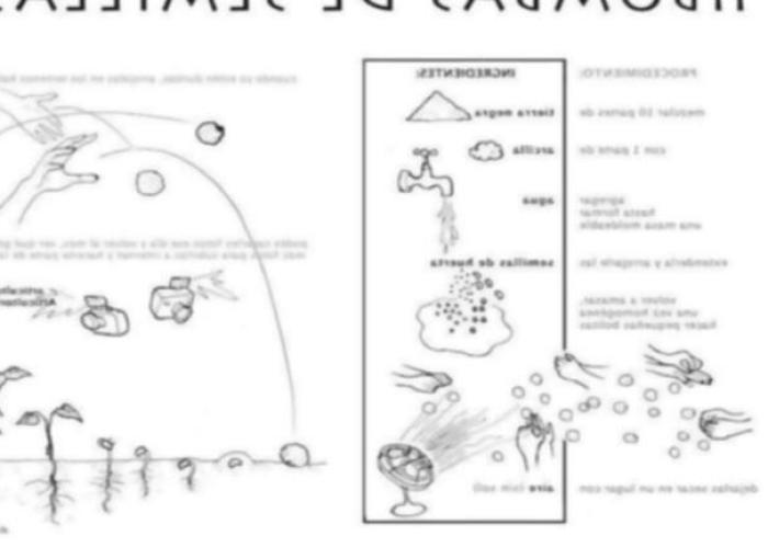 Bombas de semillas caseras