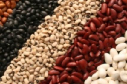 http://cityseed.org/wp-content/uploads/2014/06/beans.jpg