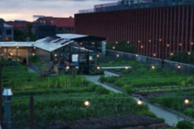 Este es el restaurante más ecológico del mundo