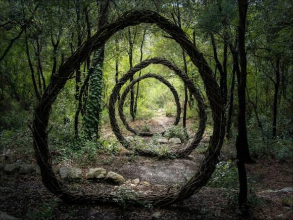 Arte com a natureza 1