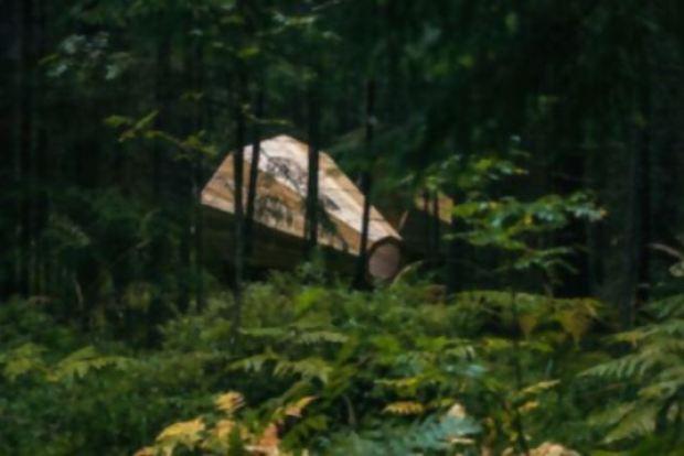 megafono-escuchar-bosque-6