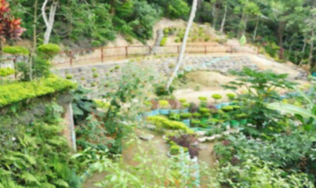Parque-Ecológico-do-Vidigal-fotos-Mariana-Reis-post-71