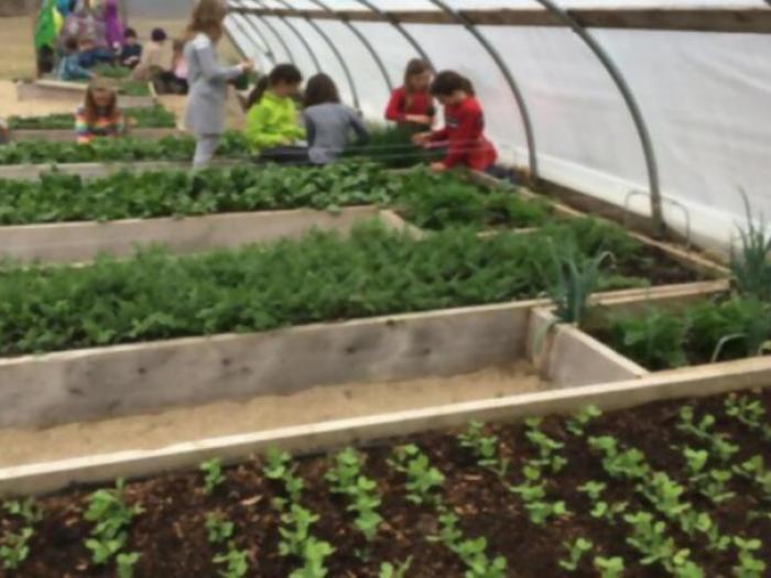 Cultivar tu propios alimentos, asignatura obligatoria en todos los colegios