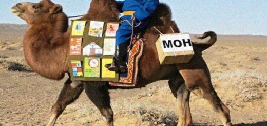9 bibliotecas itinerantes que levam cultura a regiões remotas do mundo
