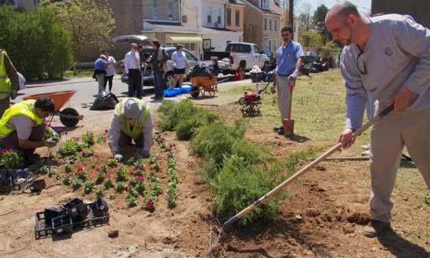Terrenos baldíos transformados en espacios verdes pueden reducir la depresión