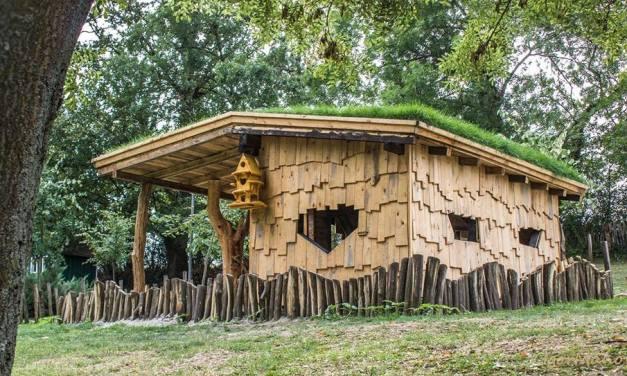5 Construcciones Naturales simples de hacer