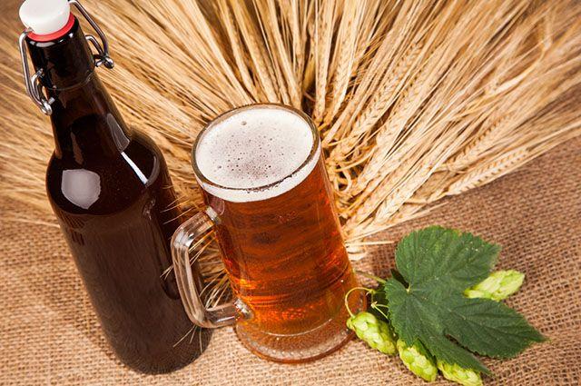 6 beneficios de la cebada, Usos y beneficios de la cebada