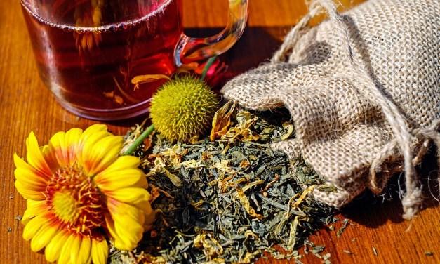 Listado de Hierbas Medicinales para cada dolencia o afección.