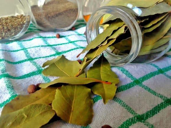 Remedios naturales para las llagas o aftas