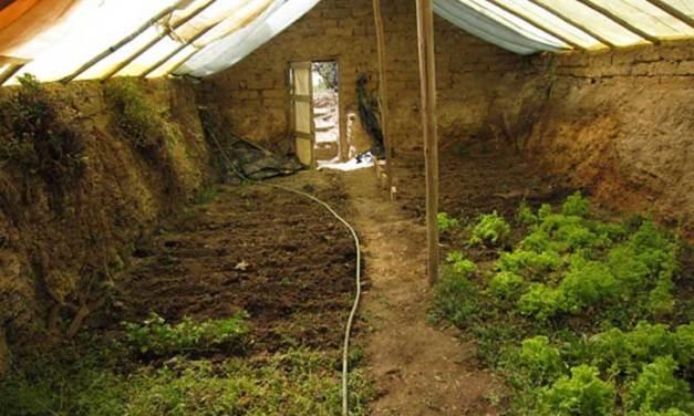 Construye un invernadero subterráneo para cultivar alimentos sanos todo el año
