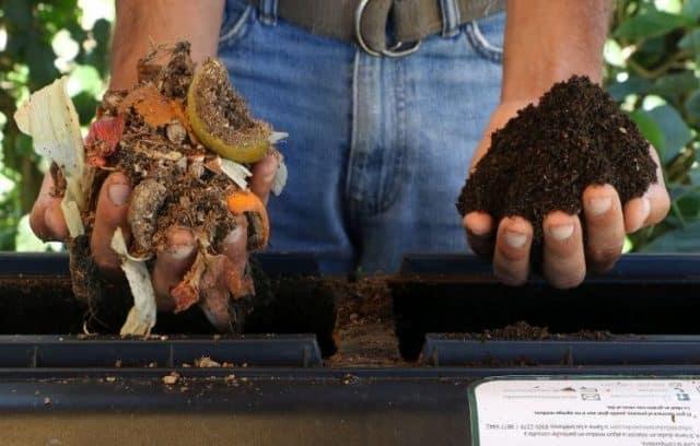 Pagarán menos impuestos los vecinos que composten sus residuos en la Ciudad de Buenos Aires
