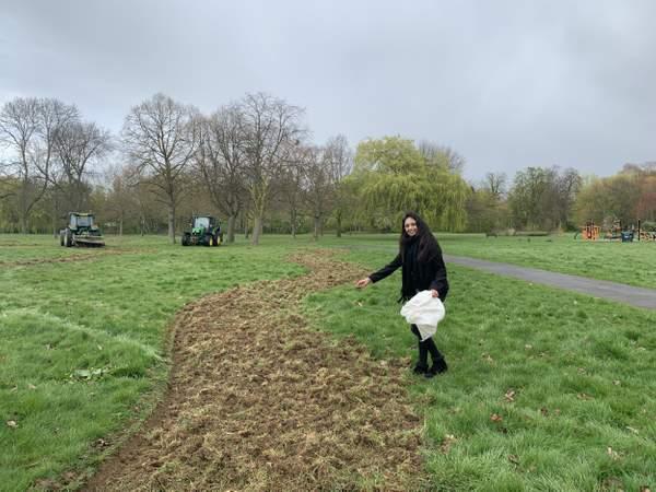 Barrio de Londres plantará 11 km de corredores de flores para las abejas