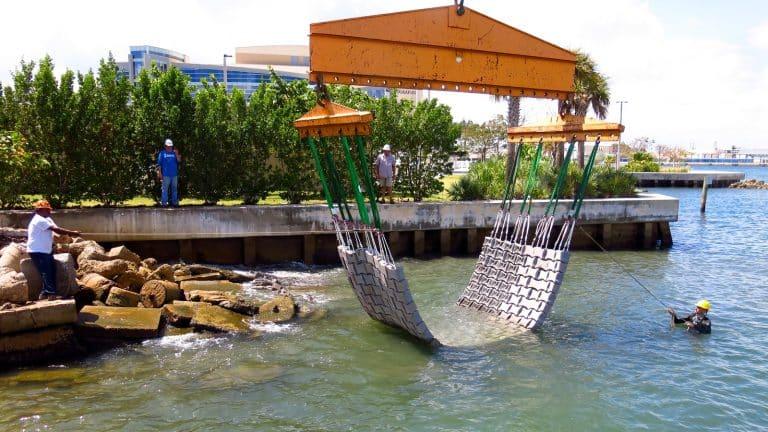 Bióloga crea concreto que ayuda a proteger la fauna marina