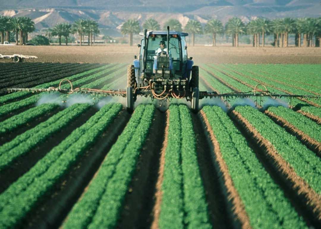 Austria prohíbe el uso del controvertido herbicida glifosato por su posible efecto cancerígeno