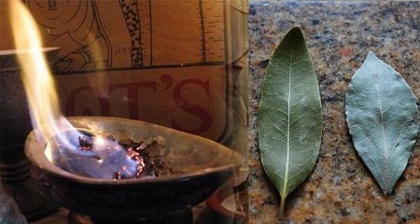 Increíbles beneficios de quemar hojas de laurel en tu casa