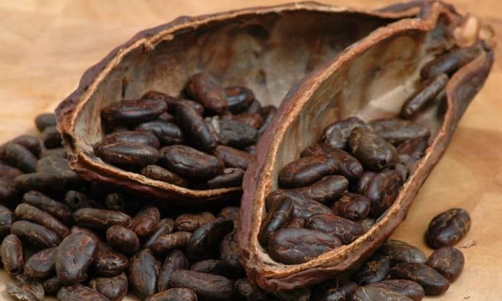 La civilización maya utilizaba el chocolate como dinero