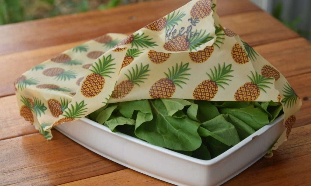 Las telas enceradas para alimentos reemplazan las envolturas de plástico en la cocina
