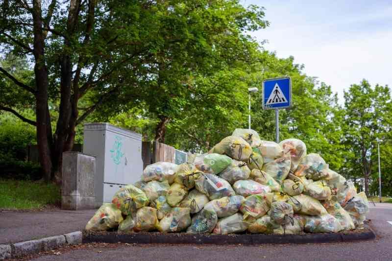 Descubren gusano que come plástico, alternativa para reducir los residuos