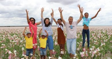 Después de 3 años el desierto de Namibia vuelve a florecer