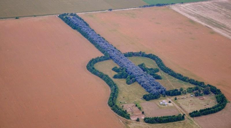 La historia del cordobés que dibujó una guitarra con 7.000 árboles