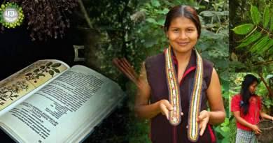 , Tribu amazónica crea enciclopedia de medicina natural tradicional de 500 páginas