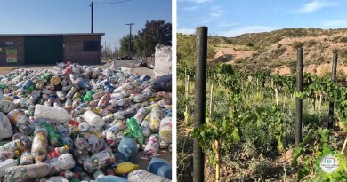 , Transforman residuos plásticos en postes, para evitar la tala de millones de árboles