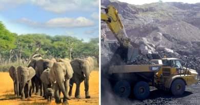 , Victoria histórica en Zimbabwe: se prohíbe la minería en todos los parques nacionales