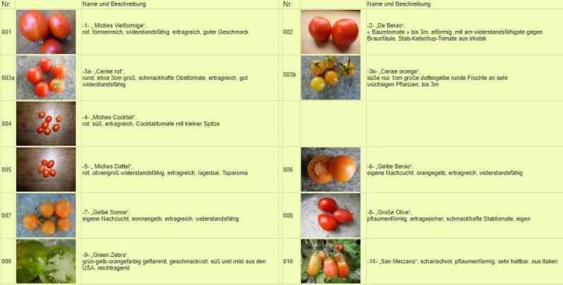 Michael Schick, el maestro huertero que cultiva más de 900 variedades de tomates